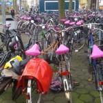 pink, pink, pink sind alle meine Fahrräder