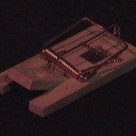 Schocker-Video: Mausefallen-Spiel (bei der ui.-Show)
