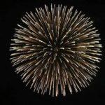 Die 10 besten Feuerwerke