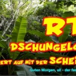 RTL Dschungelcamp 2014 – das muss nicht sein!